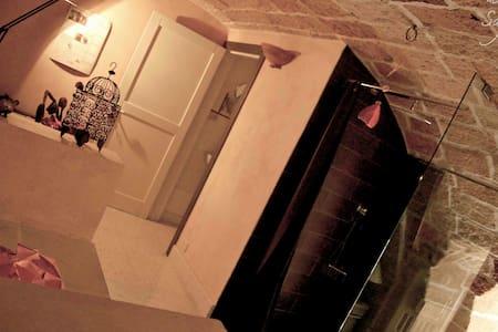 Mezzanino-dimora storica - Rumah