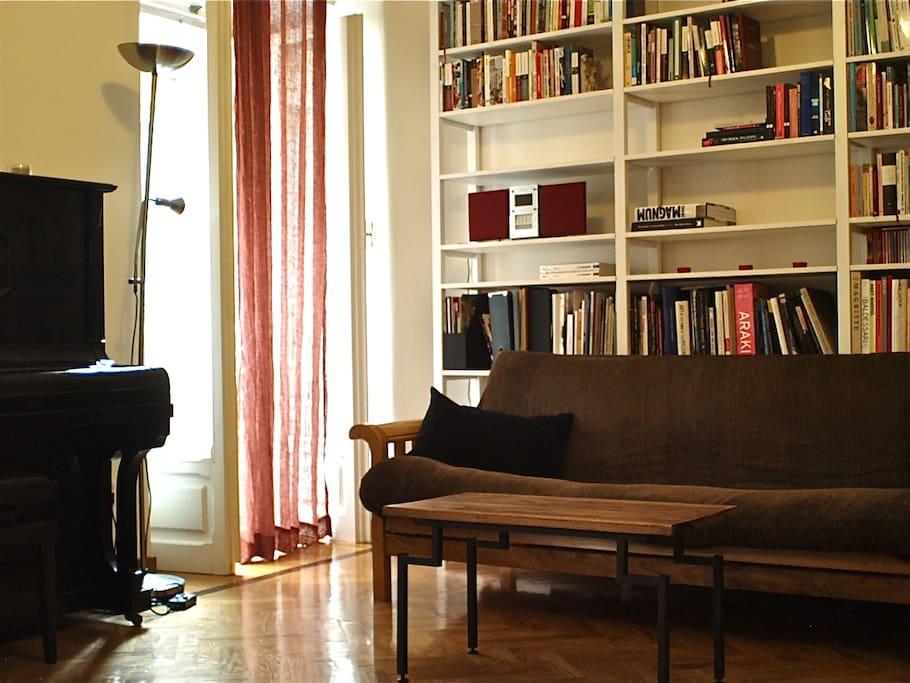 Living room, shelves, sofa-bed