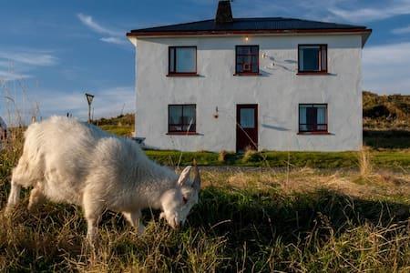 Hólmur Guesthouse - Hornafjörður - Szoba reggelivel