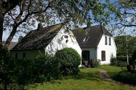 Villa i rolig landsby tæt ved Odense - Odense