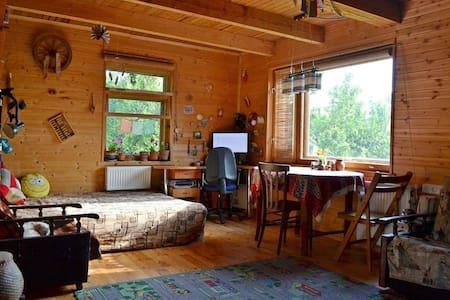 Уютный Дом-над-рекой - Pskov