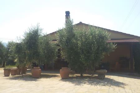 Casa Alexandra a 2 km dal mare - Villa