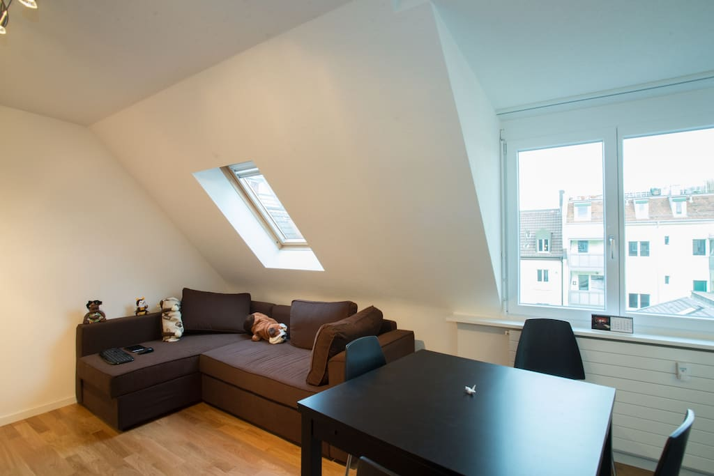 Cozy apt room in Zurich City Center