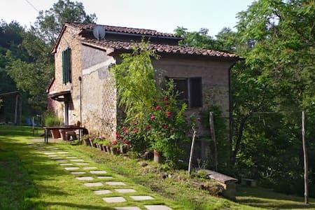 Tuscany / Umbria Farmhouse - Monte Santa Maria Tiberina - Villa