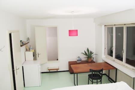 Entire home/apt in Zurich - Zurich - Apartmen