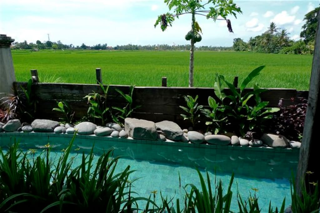 The 17 meter long pool is situated directly in front of the Mainhouse