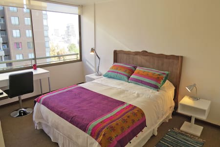 Furnished Apartment Forestal Park 6 - Recoleta - Apartment