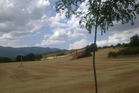 Casa con jardín en Segovia, España - Riaza - Casa