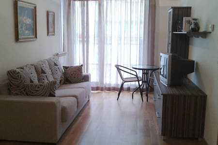 nice apartment Arluzepe in Navarre - Appartement
