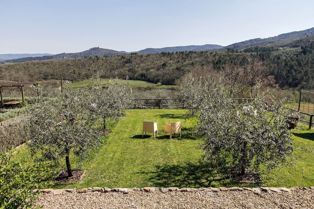 La Casina: view from the garden | vista dal giardino