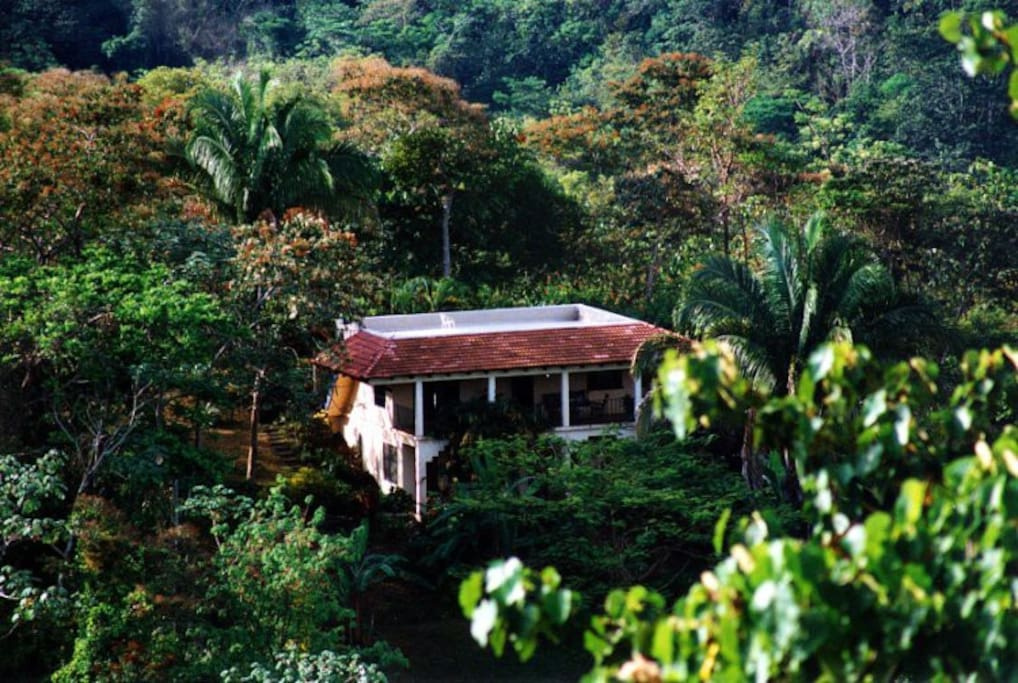 Costa Rica's Favorite Family Rental