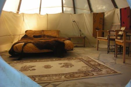 Sitting Bull Tipi at Tipi Village  - Tipi