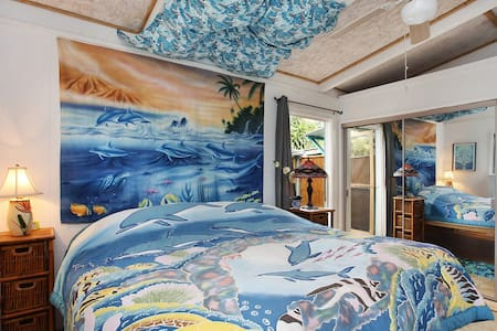 Eco Dolphin Room, Dragonfly Ranch