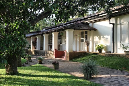 This twin/double room is comfortable for two people, plus we can add another single bed for a child if necessary.   This room has fan and mosquito net.   This rooms shares a bathroom with our other guest room next door.   Includes Breakfast.