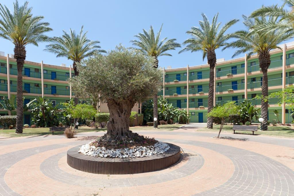Seaview suite in Caesarea, Israel