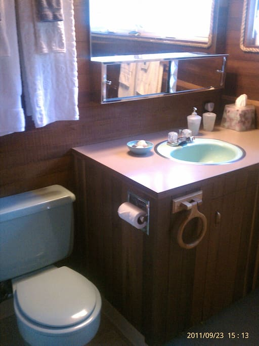 Cool, vintage green bathroom with great water-pressure