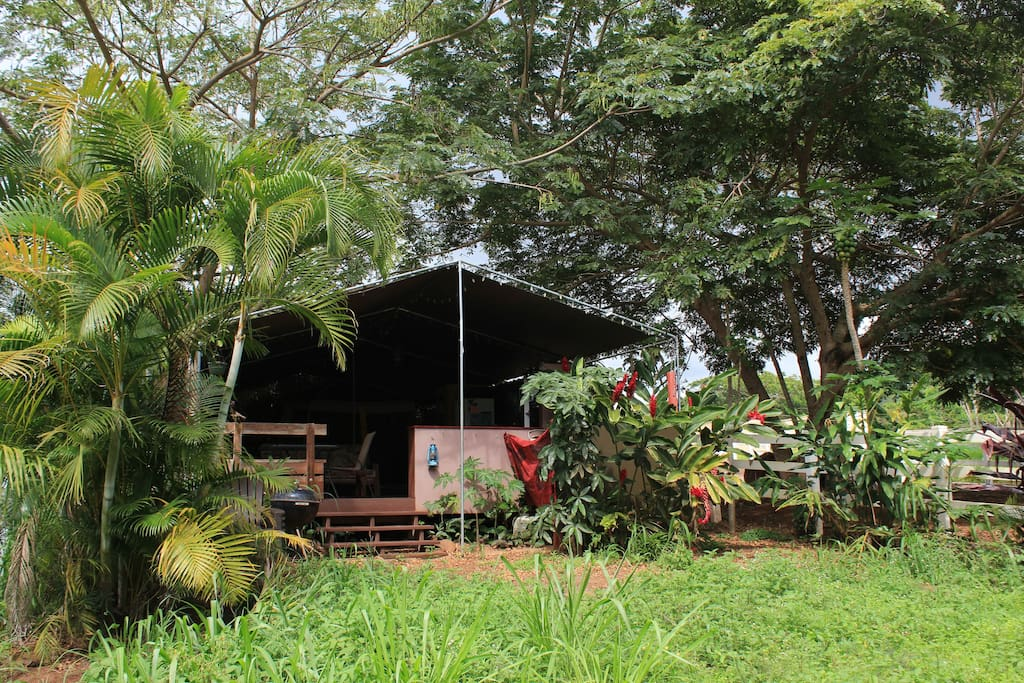 Private glamping yard and lanai