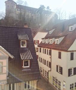 very nice apartment in the old town of Tuebingen - Tübingen - Condominium