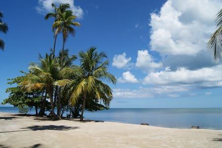 Terrazas del Golf garden steps from the beach.WiFi - Cabo Rojo - Apartment