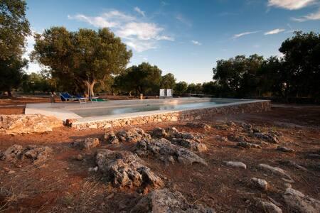 Villa and trullo with private pool - Maison
