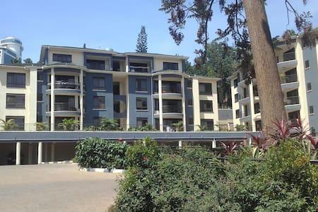 Two bedroom apartment in Nakasero - Kampala