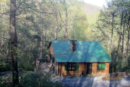 Bear Ridge, a 100 Year Old Cabin by Nat'l Forest - Cabin