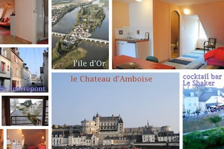 Amboise apartment on a island Loire - Apartment