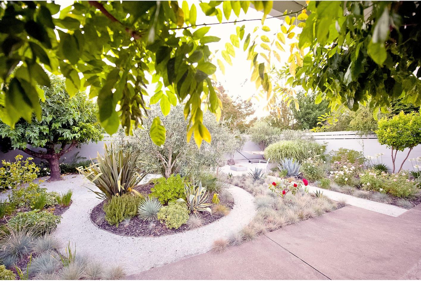 Very private dreamlike garden...