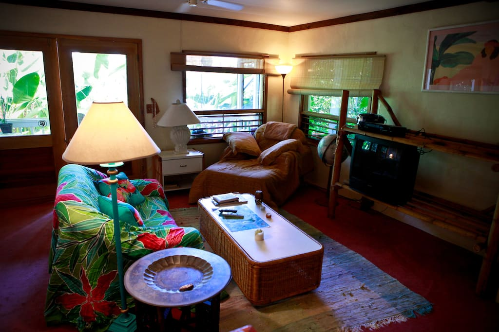 Jungle Studio south shore homestay