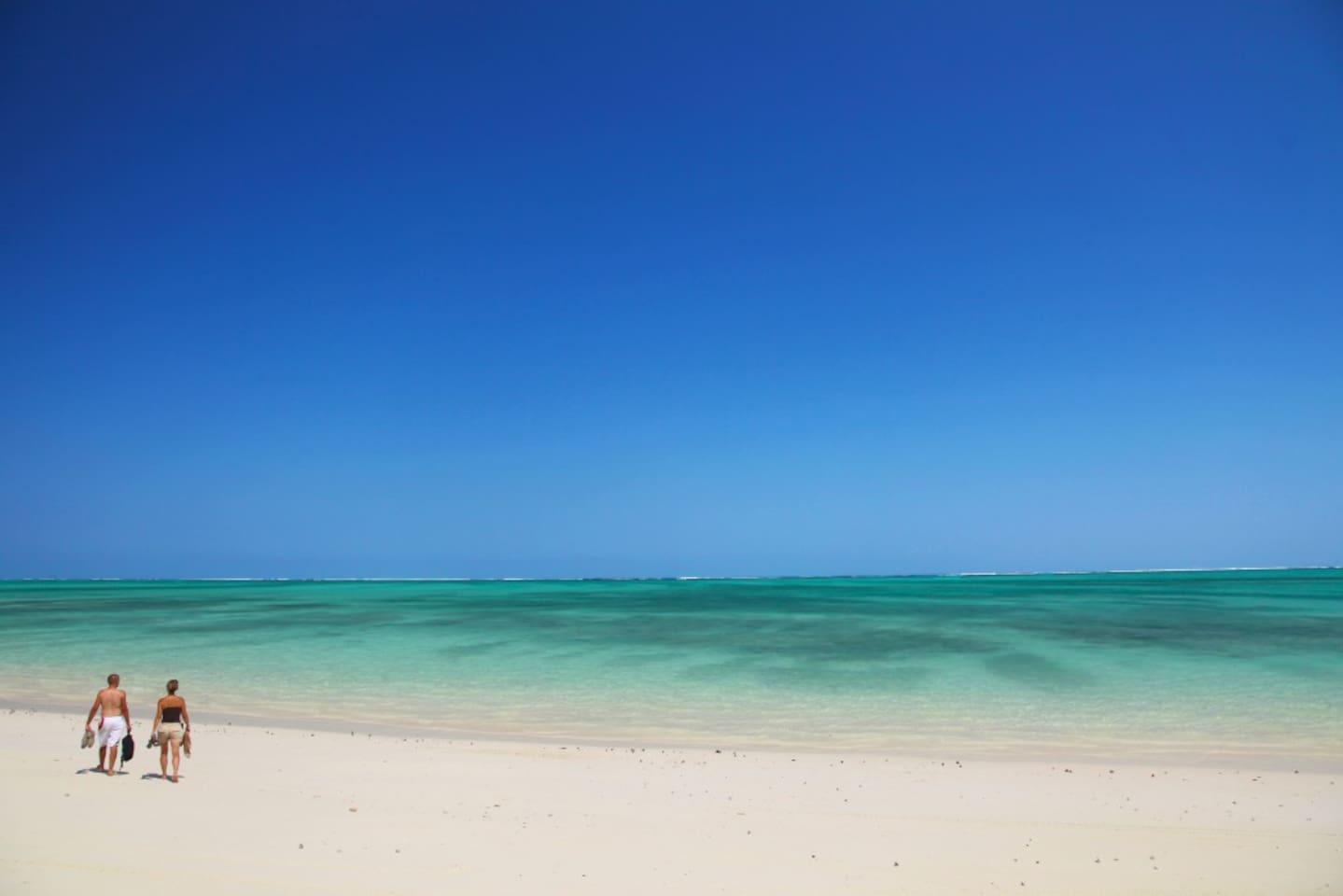 La nature et la tranquilité, du soleil toute l'année et un lagon d'une beauté incroyable. Idéal pour les amoureux et les familles !