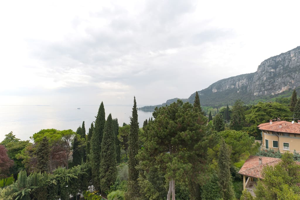From the common terrace
