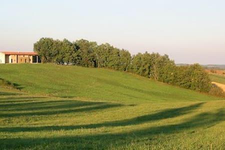 Farmhouse With Wonderful Pyrenees V