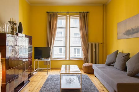 Vintage apartment in central Sofia - Daire