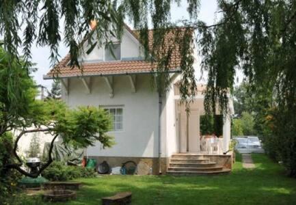 Panoramic Aparment Balaton - House