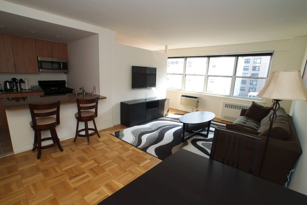Large luxury upper east side studio apartments for rent for Studios for rent in nyc