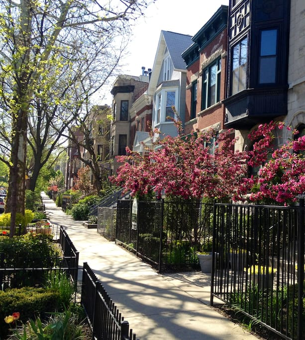 Heart of the active Lakeview/Boystown neighborhood