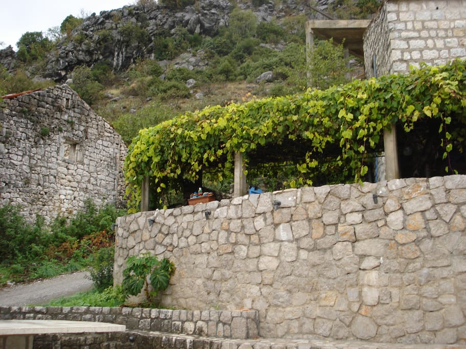 Our terrace with grapevine - view from the village square