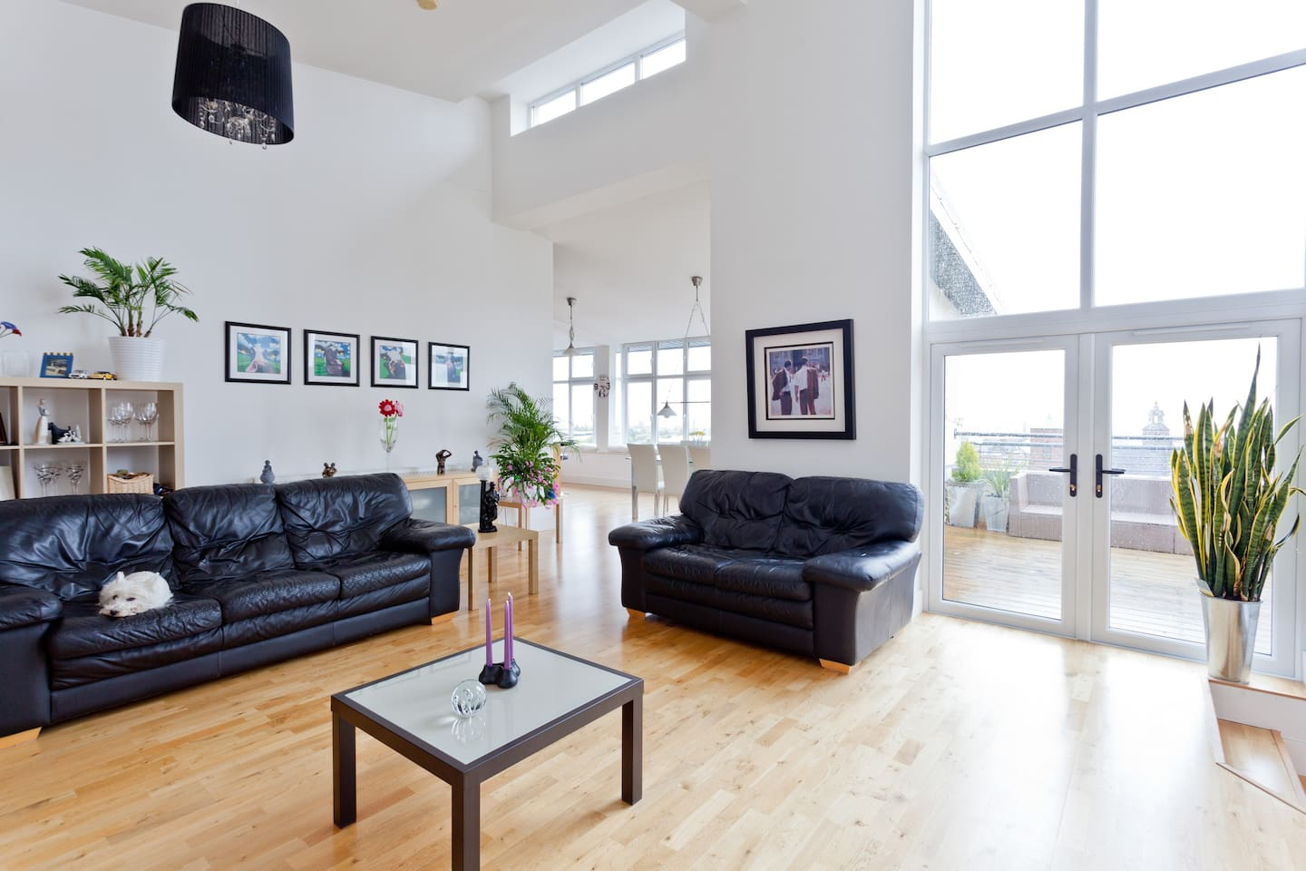 Bright and spacious living with dining and kitchen area in the background....leading unto deck and roof garden.