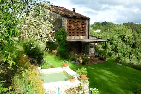 'Il Gallo' in the hills of Lucca - Monsagrati - Bed & Breakfast