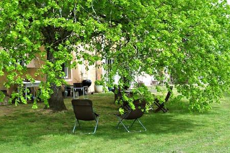 Chai restauré au milieu des vignes - Hus
