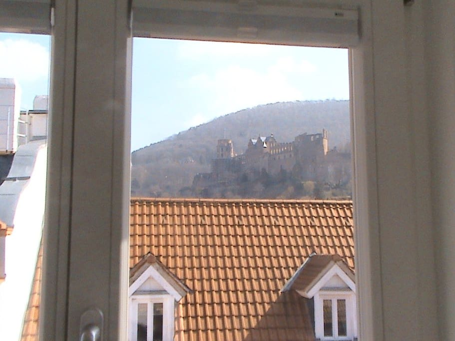 View to Heidelberg castle