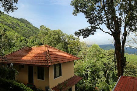 B&B Poised at an altitude of 6000 feet - Idukki - Bed & Breakfast