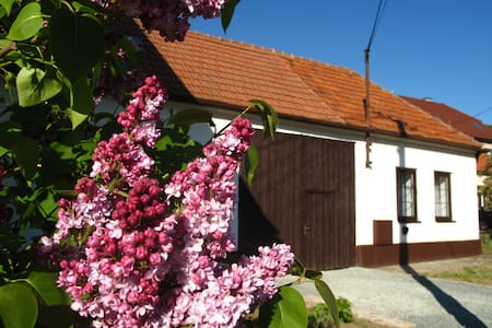 Cosy cottage with great garden and winery beside - Radějov