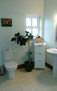 Twin Room close to Electric Picnic - Portlaoise - House