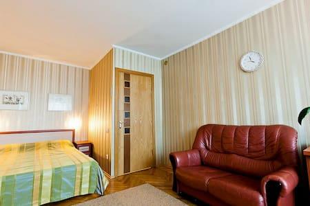 1-комн. квартира Сухая, 4 (Немига) - Minsk - Apartment