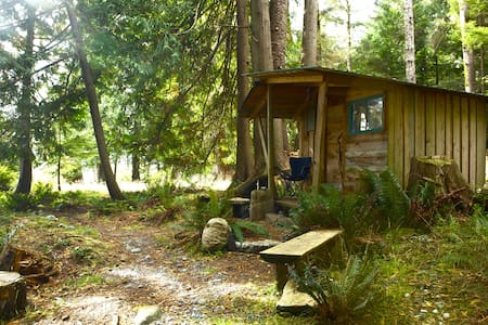 Forest hut by the ocean. - Skjul