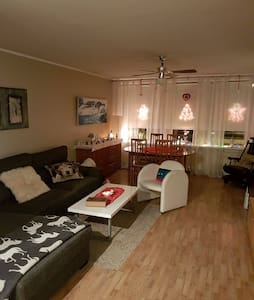 One room for two with a Guide - Reykjavik - Apartament