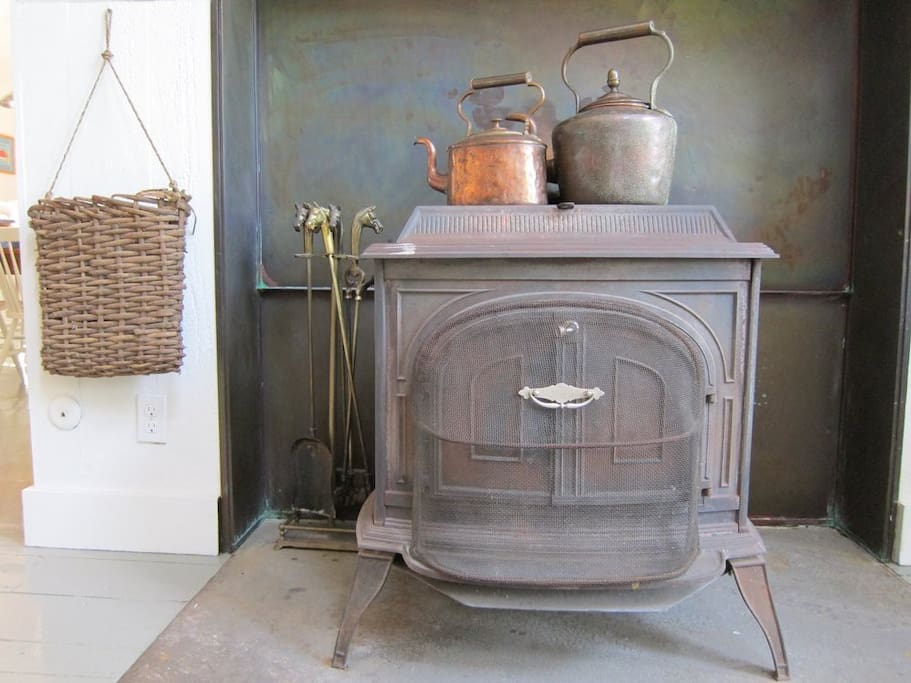 Woodburning stove in living room