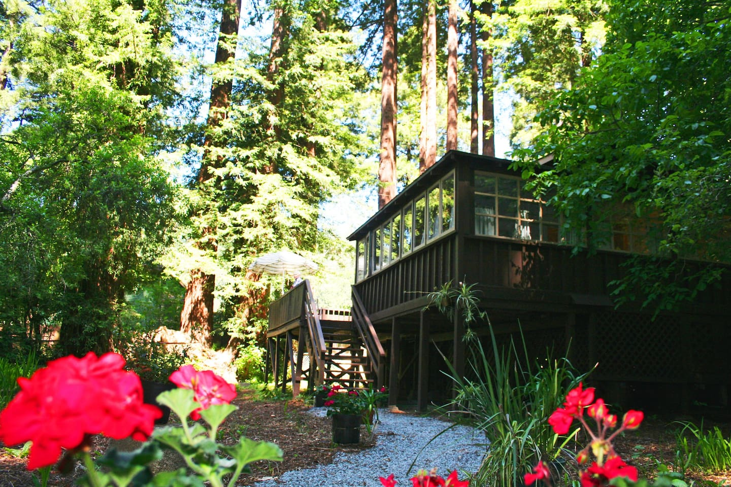 Welcome to the sweetest cabin at the River! 6 Min walk to River path!