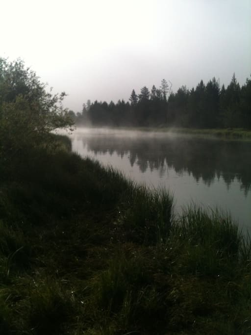 Early morning on the Deschutes river beside the house.